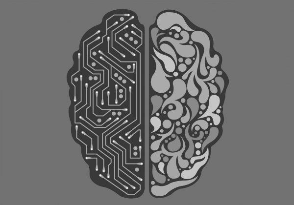 zeka geliştirme teknikleri