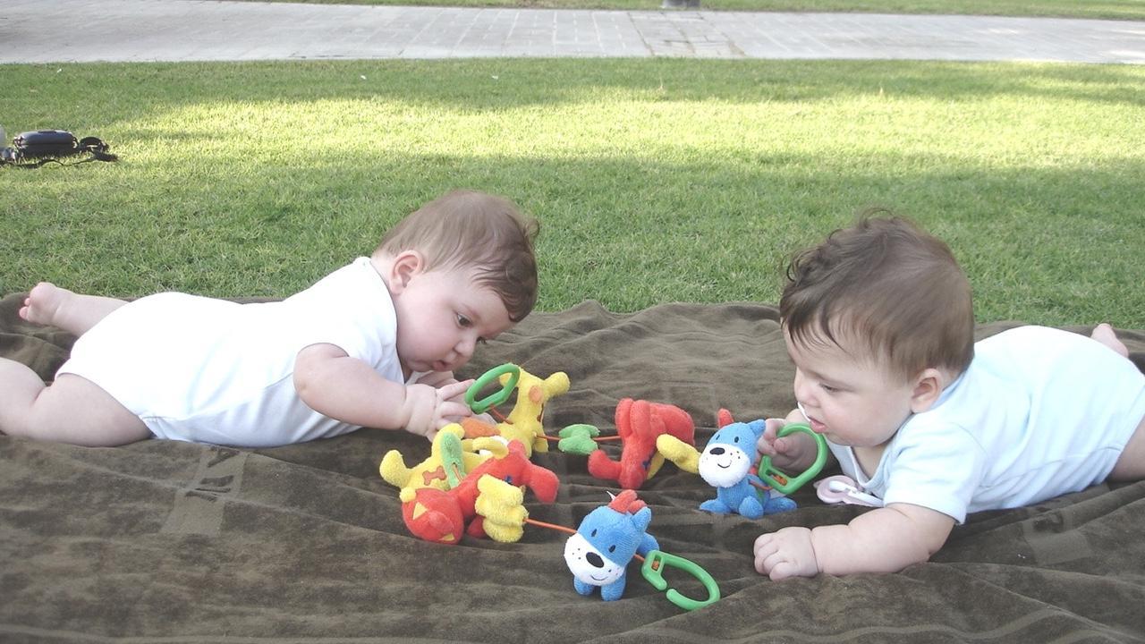 Bebek Zekâ Gelişiminin İlk 6 Aylık Evresi